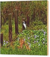 Egret And Heron Wood Print