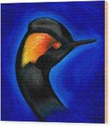 Eared Grebe Duck Wood Print