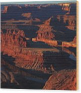 Early Morning Light Hits Dead Horse Point State Park Wood Print