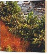 Early Autumn Along The Naugatuck Wood Print