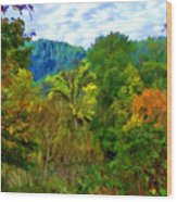Early Autumn Along The Rogue River In Oregon Wood Print