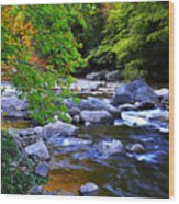 Early Autumn Along Williams River Wood Print