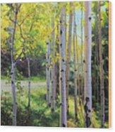 Early Autumn Aspen Wood Print