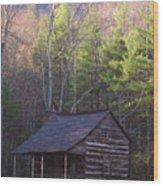 Early Cove Homestead Wood Print