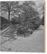 Early Evening Nyc Central Park Wood Print