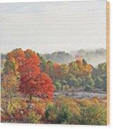 Early Fall Morning Wood Print