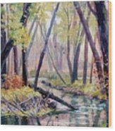 Early Fall On East Canyon Creek Wood Print