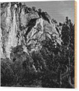 Early Morining Zion B-w Wood Print