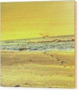 Early Morning Beach Walk Wood Print