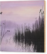 Early Morning By The Pond  Wood Print