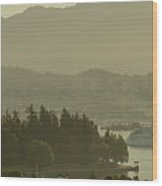 Early Morning Cruise Ship Arrival Wood Print