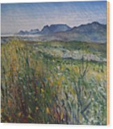 Early Morning Fog In The Foothills Of The Overberg Range Of Mountains Near Heidelberg South Africa. Wood Print
