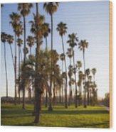 Early Morning In Santa Barbara Wood Print