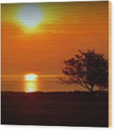 Early Morning Sunrise On A Silhouetted Beach Wood Print