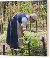 Early Settler Farming Wood Print