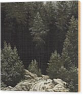 Early Snow Wood Print by Caspar David Friedrich