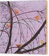 Early Spring 2 Wood Print by Carolyn Doe