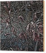 Early Spring Abstract Wood Print