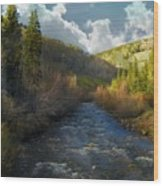 Early Spring Delores River Wood Print