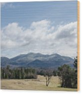 Early Spring In Lake Placid Wood Print