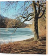 Early Spring In The Park Wood Print