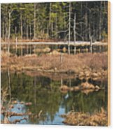 Early Spring Marsh Wood Print