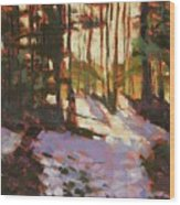 Early Spring Near Hyak Wood Print