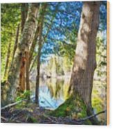 Early Spring On The River Wood Print