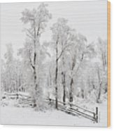 Early Spring Snow Wood Print