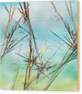 Early Spring Twigs Wood Print