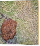 Earth Art 9491 Wood Print