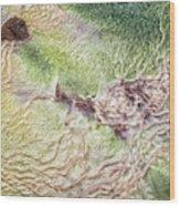 Earth Art 9492 Wood Print