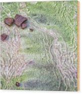 Earth Art 9493 Wood Print