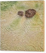 Earth Art 9498 Wood Print