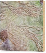Earth Art 9499 Wood Print