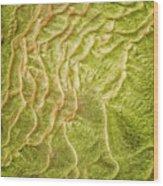 Earth Art 9511 Wood Print