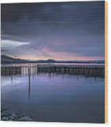 Earth Day Sunset Unsigned Wood Print