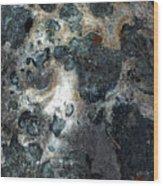 Earth Memories - Stone # 8 Wood Print
