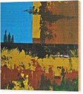 Earth Number Twelve Wood Print