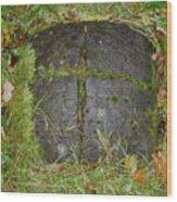 Earth Portal Wood Print
