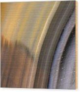 Earth Portrait 004 Wood Print