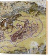 Earth Portrait 007 Wood Print