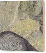 Earth Portrait 010 Wood Print