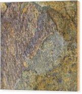 Earth Portrait 011 Wood Print
