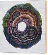 Earth Slice Wood Print