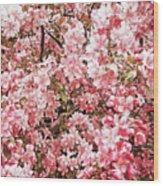 Earth Tones Apple Blossoms  Wood Print