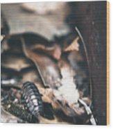 Earthen #2 Wood Print