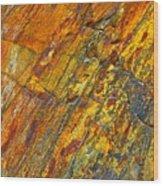 Earths Palette Wood Print