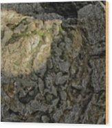 Earth's Pedestal Wood Print