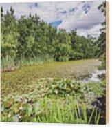East Cramlington Nature Reserve Wood Print